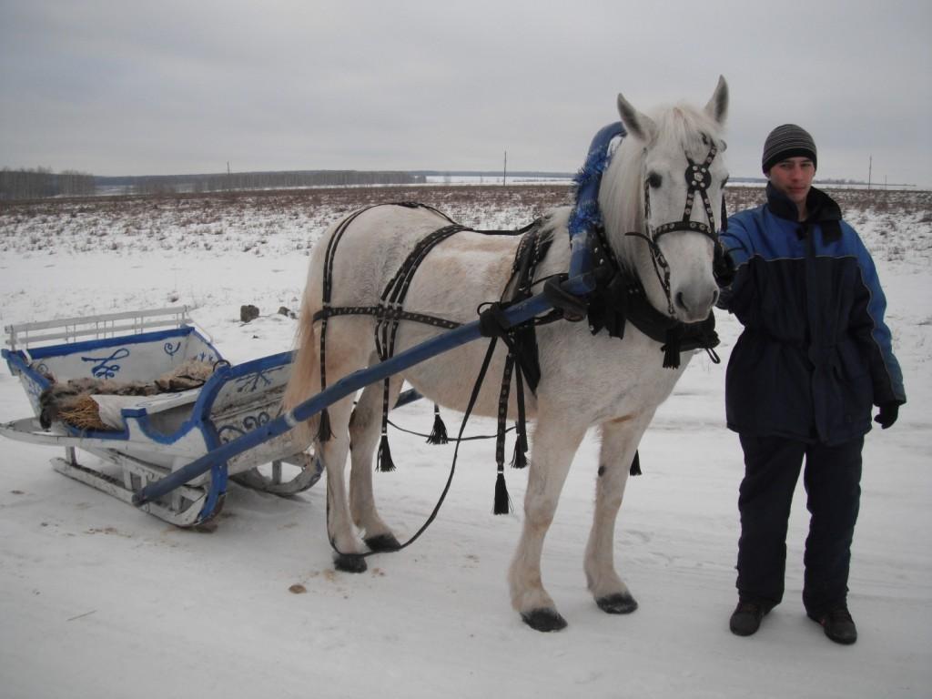 Зимние сани. Сезон 2012