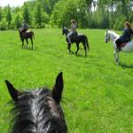 конная прогулка на Святой Источник (Перехваль)