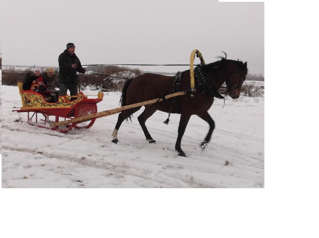 Зимние сани. сезон 2011