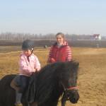 Обучение малышей верховой езде на пони