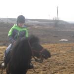 Обучение на пони на корде