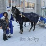 Маленькая поклонница лошадей с Дедом морозом.