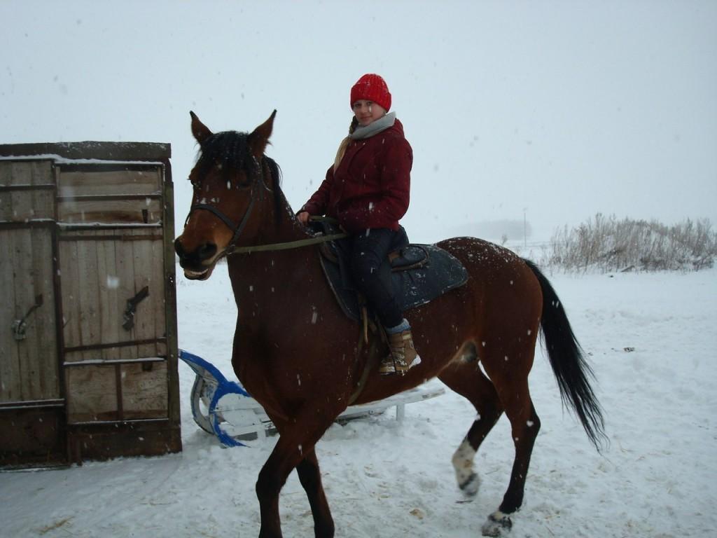 Верховая езда зимой