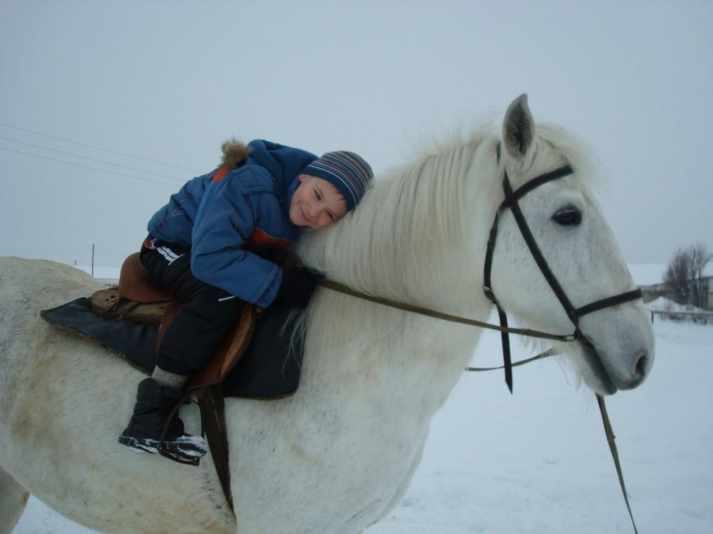 Дети любят лошадей