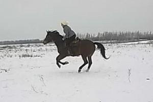 Rc8SejKJ964