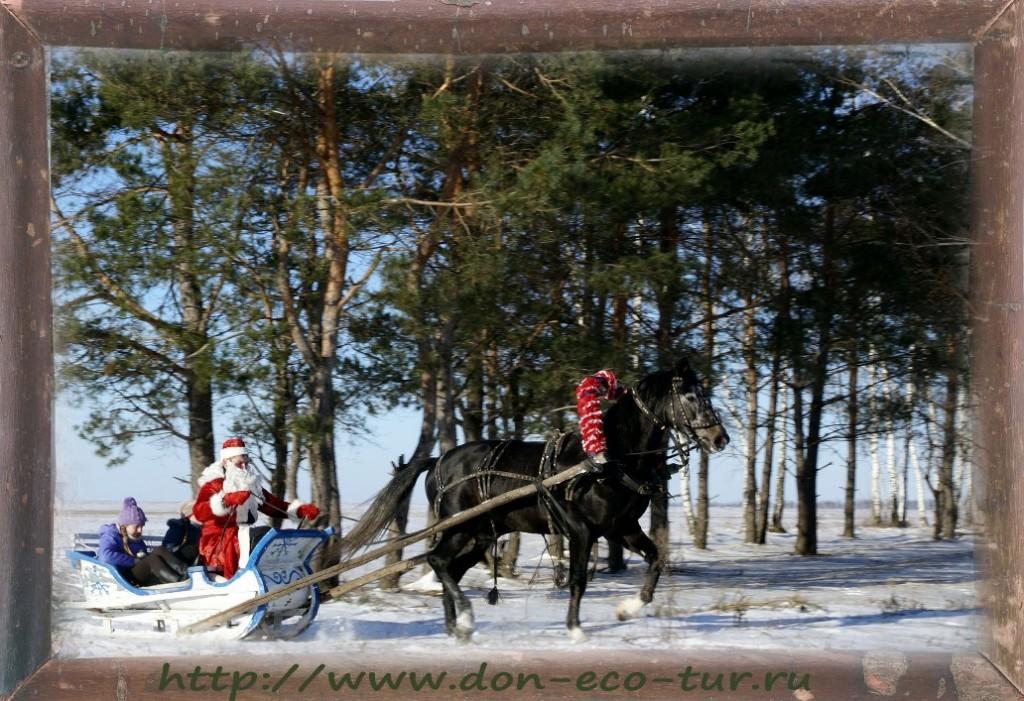 Дед Мороз  на санях. В упряжке - Лебедь