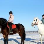 Обучение верховой езде. Зимние занятия