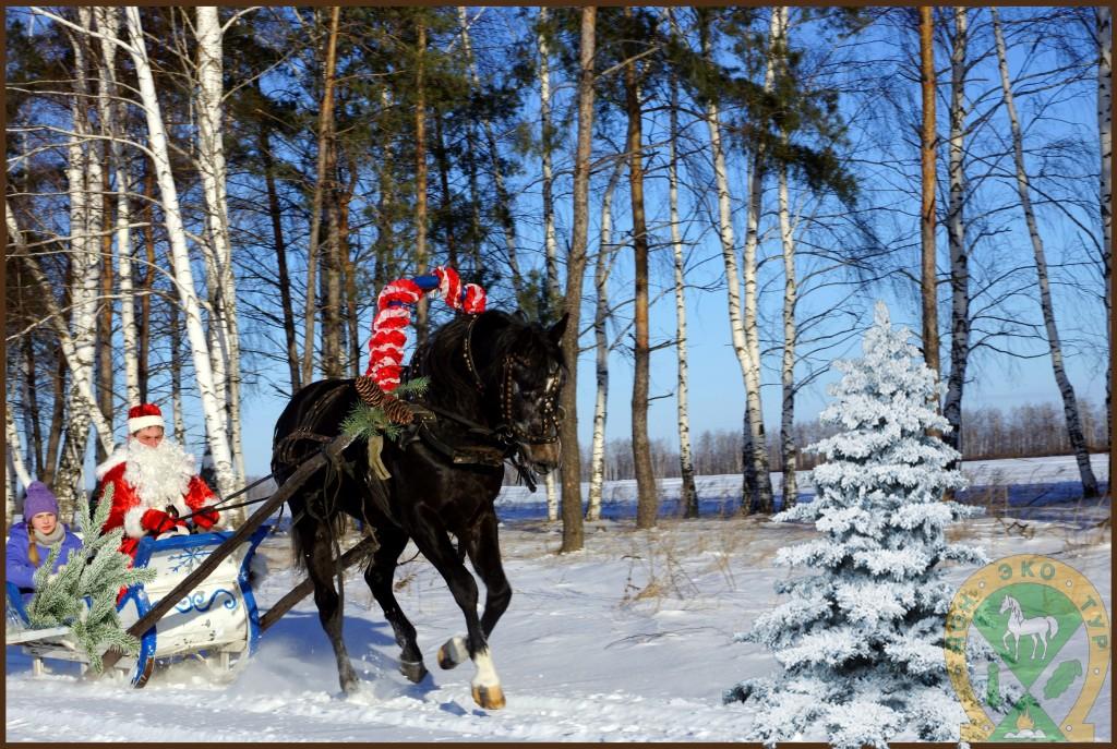Конь деда Мороза