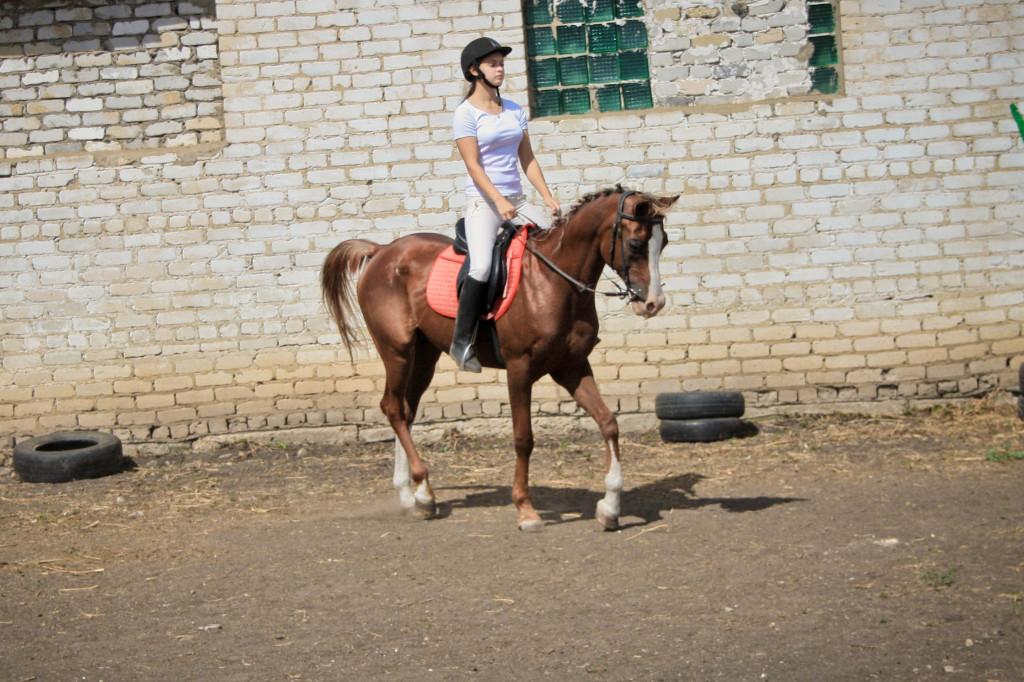 Витамин. элементарная езда.