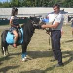 Красавец пони радует детей на выставке